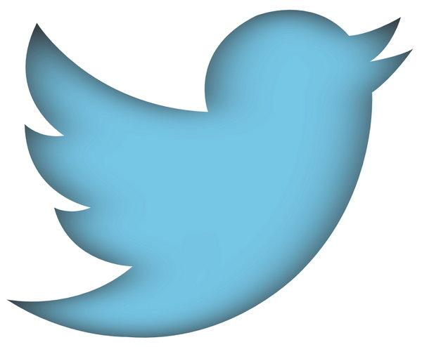 twitter-new-bird1