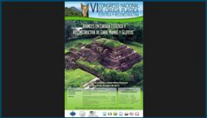 Afiche de VI Congreso Nacional de Cirugía Plástica