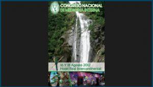 Propuesta de Afiche para Congreso de Medicina Interna 2012