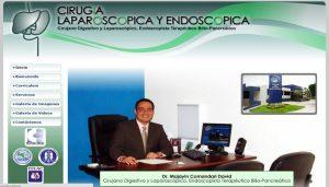 Cirugía Laparoscópica y Endoscópica